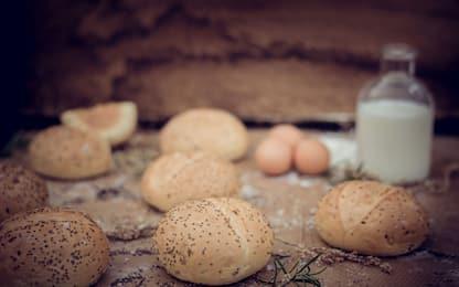 Panini al latte morbidi e soffici, la ricetta originale