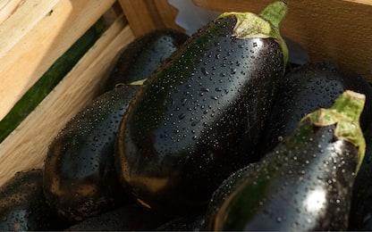 Polpette di melanzane al forno, la ricetta per il secondo piatto