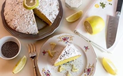 Torta soffice al limone, la ricetta facile e veloce da preparare