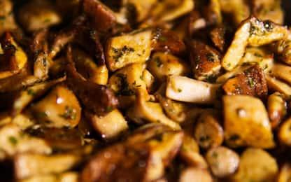 Scaloppine di pollo ai funghi porcini, la ricetta facile e veloce