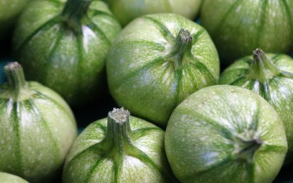 Zucchine tonde ripiene vegetariane, tre ricette semplici e sfiziose