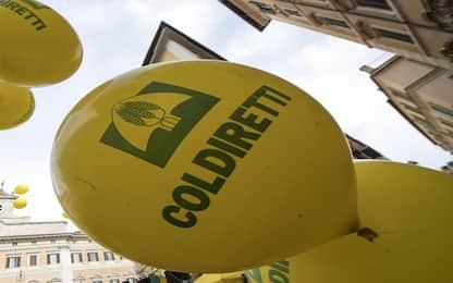 Presidente Coldiretti Lombardia interdetto da attività imprenditoriale