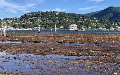 Maltempo in Lombardia, esonda il lago di Como: strade allagate