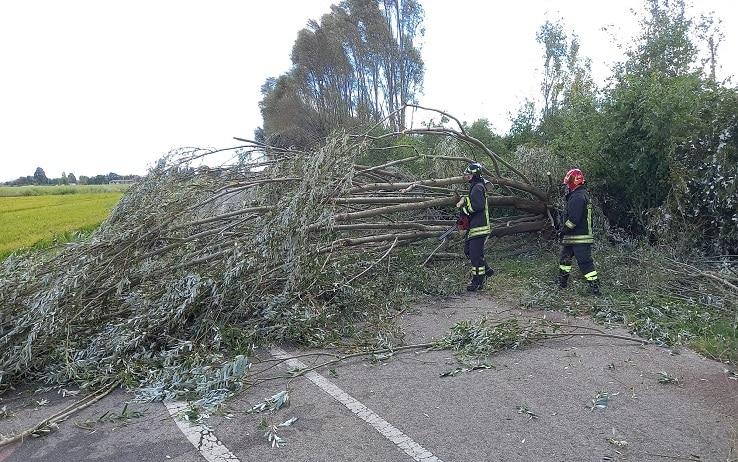 pavia - danni maltempo nel Pavese, in particolare a Marzano - foto torres