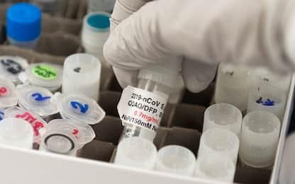 Covid, in Piemonte 529 contagi su 19.905 tamponi processati