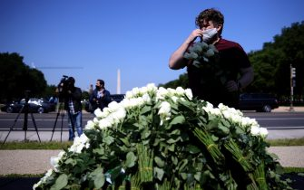 WASHINGTON, DC - MAY 13:  Robby Diesu, an activist with Move On, places white roses at a memorial for victims of COVID-19 on the National Mall May 13, 2020 in Washington, DC. More than 80,000 Americans have died from coronavirus in the past three months.  (Photo by Win McNamee/Getty Images)