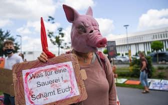 Coronavirus, Germania, industria carne