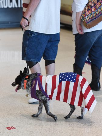epa08499460 Supporters of US President Donald J. Trump walk a dog clad in an American Flag during a rally inside the Bank of Oklahoma Center in Tulsa, Oklahoma, USA, 20 June 2020. The campaign rally is the first since the COVID-19 pandemic locked most of the country down in March 2020.  EPA/ALBERT HALIM