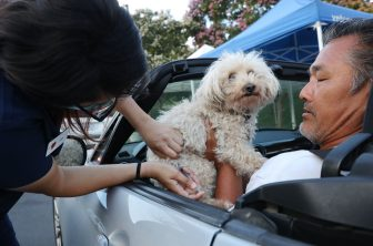 MISSION VIEJO, CALIFORNIA - JUNE 23: A veterinary technician vaccinates a dog at a drive-through pet vaccine clinic at Mission Viejo Animal Services Center amid the COVID-19 pandemic on June 23, 2020 in Mission Viejo, California. The vaccine clinic is usually conducted by walk-in but was held as a drive-through for safety reasons as the spread of the coronavirus continues. Some dogs were vaccinated inside their owner's vehicles while other dogs and cats received their vaccines outside the car.  (Photo by Mario Tama/Getty Images)