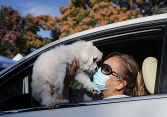 MISSION VIEJO, CALIFORNIA - JUNE 23:  Sasha Cardenti holds her dog Cohiba before Cohiba is vaccinated at a drive-through pet vaccine clinic at Mission Viejo Animal Services Center amid the COVID-19 pandemic on June 23, 2020 in Mission Viejo, California. The vaccine clinic is usually conducted by walk-in but was held as a drive-through for safety reasons as the spread of the coronavirus continues. Some dogs were vaccinated inside their owner's vehicles while other dogs and cats received their vaccines outside the car.  (Photo by Mario Tama/Getty Images)