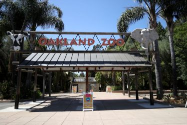 OAKLAND, CALIFORNIA - JULY 01: The entrance to the Oakland Zoo sits empty on July 01, 2020 in Oakland, California. The Oakland Zoo is on the brink of permanent closure after being temporarily closed since March  due to the coronavirus COVID-19 pandemic shelter-in-place order. The 100 acre zoo is losing an estimated $2 million a month and has laid off nearly half of its 250 person staff. The zoo is requesting to be designated an outdoor museum so it can reopen like some botanical gardens and regional parks have. (Photo by Justin Sullivan/Getty Images)