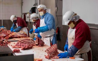 Butchers chop up beef at Jones Meat & Food Services in Rigby, Idaho, May 26, 2020. - As coronavirus clusters in slaughterhouses around the world continue to multiply, health experts are calling for better virus monitoring to prevent further infection. Slaughterhouses are shutting down across the United States after thousands of cases were confirmed. Four managers responsible for ensuring social distancing barriers have died. The Centers for Disease Control (CDC) estimated that at least 5,000 meat and poultry workers have contracted the virus in the US alone. Local meat processors are swamped with orders in the wake of the closing and interruptions of large packing houses caused by the COVID-19 virus.  Owner Brent Jones says his business is three or four times busier than normal with his employees processing up to 100 cows a week. Local demand for meat is very high, but the cost of hamburger is what used to be the price of steak. To bypass the high prices and shortages, locals buy animals from ranchers and farmers and have local butchers kill and process an entire cow of pig, then store the meat in freezers. (Photo by Natalie Behring / AFP) (Photo by NATALIE BEHRING/AFP via Getty Images)