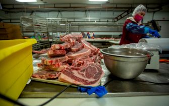 A woman packages beef at Jones Meat & Food Services in Rigby, Idaho, May 26, 2020. - As coronavirus clusters in slaughterhouses around the world continue to multiply, health experts are calling for better virus monitoring to prevent further infection. Slaughterhouses are shutting down across the United States after thousands of cases were confirmed. Four managers responsible for ensuring social distancing barriers have died. The Centers for Disease Control (CDC) estimated that at least 5,000 meat and poultry workers have contracted the virus in the US alone. Local meat processors are swamped with orders in the wake of the closing and interruptions of large packing houses caused by the COVID-19 virus.  Owner Brent Jones says his business is three or four times busier than normal with his employees processing up to 100 cows a week. Local demand for meat is very high, but the cost of hamburger is what used to be the price of steak. To bypass the high prices and shortages, locals buy animals from ranchers and farmers and have local butchers kill and process an entire cow of pig, then store the meat in freezers. (Photo by Natalie Behring / AFP) (Photo by NATALIE BEHRING/AFP via Getty Images)