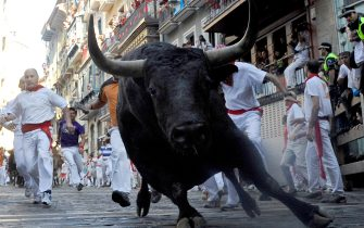 PAMPLONA, SPAIN - JULY 11:  A fighting bull goes around Estafeta corner on the sixth day of the San Fermin running-of-the-bulls on July 11, 2011 in Pamplona, Spain. Pamplona's famous Fiesta de San Fermin, which involves the running of the bulls through the historic heart of Pamplona for eight days starting July 7th, was made famous by the 1926 novel of U.S. writer Ernest Hemmingway called 'The Sun Also Rises.'  (Photo by Denis Doyle/Getty Images)