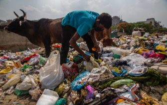 NEW DELHI, INDIA - JULY 14: An Indian ragpicker collects valuable waste items from a dumping site on July 14, 2020  in New Delhi, India.  With over 900,000 confirmed cases and 23,000 deaths, environmental and health experts have warned that India, which is currently the third worst COVID19-affected country, could face further challenges in tackling the impact of the global pandemic if immediate steps are not taken for the proper disposal of masks, gloves, personal protective equipment and other waste materials. (Photo by Yawar Nazir/Getty Images)