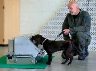 epa08564132 Joe a Coronavirus sniffer dog and his trainer during a training session at the School for Service Dogs of the Bundeswehr in Ulmen near Koblenz, Germany, 24 July 2020. In the German Bundeswehr Graefin-von-Maltzan barracks in Ulmen, service dogs are being trained as sniffer dogs for the coronavirus Covid-19.  EPA/RONALD WITTEK