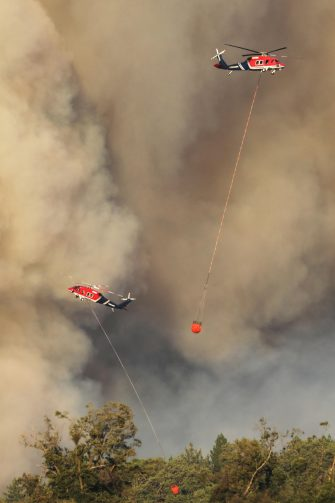 epa08580055 Firefighters battle the 'Apple Fire' near Beaumont in Riverside County, California, USA, 01 August 2020. According to the Riverside County Fire Department, over 7,500 people have been evacuated as a wildfire that started on 31 July burns out of control in the area east of Los Angeles.  EPA/DAVID SWANSON