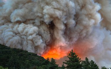 CHERRY VALLEY, CA - AUGUST 01: Flames and heavy smoke approach on a western front of the Apple Fire, consuming brush and forest at a high rate of speed during an excessive heat warning on August 1, 2020 in Cherry Valley, California. The fire began shortly before 5 p.m. the previous evening, threatening a large number of homes overnight and forcing thousands to flee before exploding to 12,000 acres this afternoon, mostly climbing the steep wilderness slopes of the San Bernardino Mountains.  (Photo by David McNew/Getty Images)