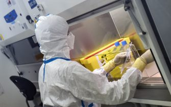 French engineer-virologist Thomas Mollet divides a 40ml flask, infected with a Sars-CoV-2 virus, under a laminar flow at the Biosafety level 3 laboratory (BSL3) of the Valneva SE Group headquarters in Saint-Herblain, near Nantes, western France, on July 30, 2020. - Could the Covid-19 vaccine be found by a biotechnology company in western France, far from major global research centers? The hypothesis is more than plausible for the British government, which has just signed an important agreement with it. (Photo by JEAN-FRANCOIS MONIER / AFP) (Photo by JEAN-FRANCOIS MONIER/AFP via Getty Images)