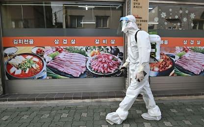 Coronavirus in Corea del Sud: casi ai massimi da marzo