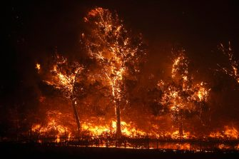 epa08702838 Trees on fire as the Glass Fire rages along the famous Silverado Trail road in the town of Deer Park in Napa County, California, USA, 27 September 2020. Northern California is under extreme fire alert.  EPA/JOHN G. MABANGLO