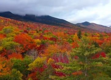 I colori dell'autunno nel New Hampshire ripresi dal drone. VIDEO