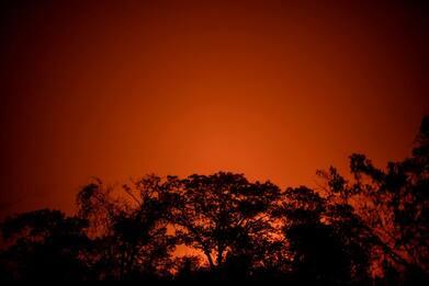 Amazzonia: incendi 2020 +61% in un anno, record decennale. FOTO