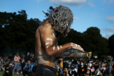 Australia, albero sacro per aborigeni abbattuto per fare autostrada