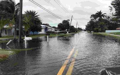 Uragano Eta, in Honduras 57 morti. FOTO
