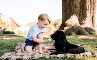 epa05436265 An undated handout photo released by the Duke and Duchess of Cambridge of Prince George who celebrates his third birthday on 22 July 2016, sitting on a picnik blanquet while offering an ice cream to family dog Lupo. The picture was taken at the family's Norfolk home in mid-July by Matt Porteous.  EPA/MATT PORTEOUS / PRESS ASSOCIATION UK, IRELAND OUT; EDITORIAL USE ONLY TO REPORT EVENT MENTIONED IN THE CAPTION. Reuse of the picture may require further permission from the copyright holder. HANDOUT EDITORIAL USE ONLY/NO SALES