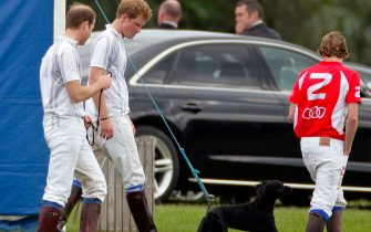 ASCOT, UNITED KINGDOM - MAY 13: (EMBARGOED FOR PUBLICATION IN UK NEWSPAPERS UNTIL 48 HOURS AFTER CREATE DATE AND TIME) Prince William, Duke of Cambridge and Prince Harry walk with Prince William's and Catherine, Duchess of Cambridge's dog Lupo after playing in the Audi Polo Challenge charity polo match at Coworth Park Polo Club on May 13, 2012 in Ascot, England. (Photo by Indigo/Getty Images)
