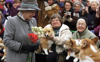 WINNIPEG, CANADA:  Queen Elizabeth II talks with members of the Manitoba Corgi Association during a visit to Winnipeg 08 October 2002. The queen, making her 20th trip to Canada, is the last stop on the year-long jubilee tour celebrating her 50-year reign.  AFP PHOTO/POOL/Adrian WYLD (Photo credit should read ADRIAN WYLD/AFP via Getty Images)