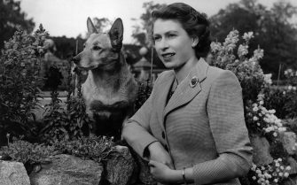 28th September 1952:  Queen of Great Britain Elizabeth II at Balmoral Castle with one of her Corgis.  (Photo by Lisa Sheridan/Studio Lisa/Getty Images)