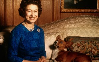 (Original Caption) Sandringham, Norfolk, England, UK: Britain's Queen Elizabeth II smiles radiantly during a picture-taking session in the salon at Sandringham House. Her pet dog looks up at her. These photos were taken in connection with the royal Family's planned tour of Australia and New Zealand.