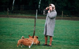WINDSOR, UNITED KINGDOM: Queen Elizabeth II photographing her corgis at Windsor Park in 1960 in Windsor, England. (Photo by Anwar Hussein/Getty Images)