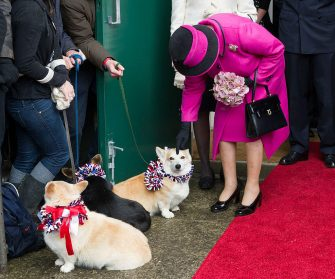 SHERBORNE, ENGLAND - MAY 01:  Queen Elizabeth II strokes a corgi during a visit to Sherborne Abbey on May 1, 2012 in Sherborne, England.  The Queen and Duke of Edinburgh are visiting the South West of England as part of their Diamond Jubilee Tour of the country.  (Photo by Arthur Edwards - WPA Pool/Getty Images)