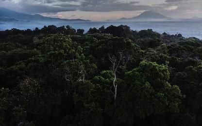 Congo, Parco del Virunga: da patrimonio Unesco a covo di gruppi armati