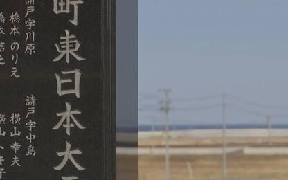 Disastro di Fukushima: nel 2011 il terremoto e lo tsunami. VIDEO