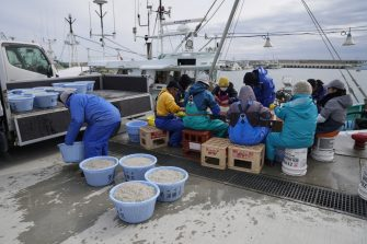 Fishermen sort a catch of Japanese icefish at Ukedo fishing port in Namie, Fukushima Prefecture, Japan, on Monday, March 8, 2021. Laid waste by a nuclear disaster a decade ago, Japans Fukushima is still struggling to recover, even as the government tries to bring people and jobs back to former ghost towns by pouring in billions of dollars to decontaminate and rebuild. Photographer: Toru Hanai/Bloomberg via Getty Images