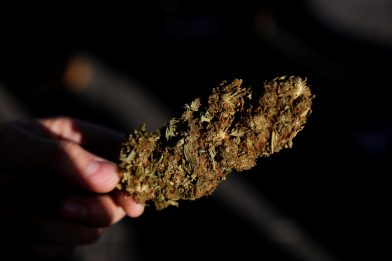 Ercolano, sequestrati un chilo di hashish e marijuana