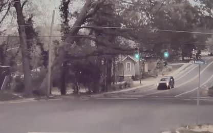 Albero cade sulla strada, automobile riesce ad evitarlo. VIDEO
