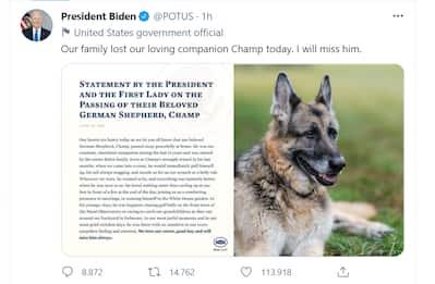Usa, Biden annuncia la morte dell'amato cane Champ: 'Mi mancherà'