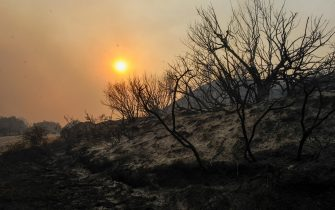 I danni provocati dagli incendi in Grecia