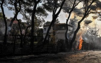 """This photograph taken on August 4, 2021 shows trees brurning near residential buildings in Varybombi, a suburb north of Athens, as fires broke out at the foot of Mount Parnes, 30 kilometres north of Athens. - Greek firefighters said in a statement that they hope to bring a forest fire blazing near Athens under control """"in the coming hours"""". More than 500 firefighters, a dozen water-bombing planes and five helicopters have been battling the blazes outside the capital since August 3 afternoon. (Photo by LOUISA GOULIAMAKI / AFP) (Photo by LOUISA GOULIAMAKI/AFP via Getty Images)"""