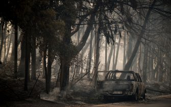 """TOPSHOT - This photograph taken on August 4, 2021 shows a burned car in a forest in Varybombi, a suburb north of Athens, as fires broke out at the foot of Mount Parnes, 30 kilometres north of Athens. - Greek firefighters said in a statement that they hope to bring a forest fire blazing near Athens under control """"in the coming hours"""". More than 500 firefighters, a dozen water-bombing planes and five helicopters have been battling the blazes outside the capital since August 3 afternoon. (Photo by LOUISA GOULIAMAKI / AFP) (Photo by LOUISA GOULIAMAKI/AFP via Getty Images)"""