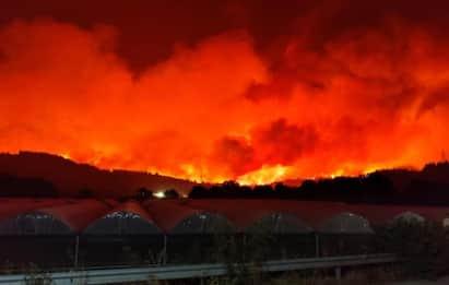 Incendi Grecia, migliaia in fuga dai roghi. Evia in fiamme