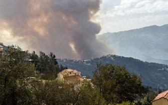 Bosco brucia in Algeria durante incendio dell'agosto 2021