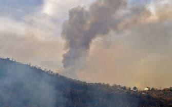 Uno degli incendi divampati tra i boschi della Cabilia, in Algeria