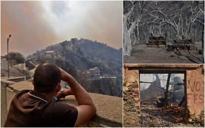 Incendi in Algeria, 65 morti tra cui 28 militari impegnati in soccorsi