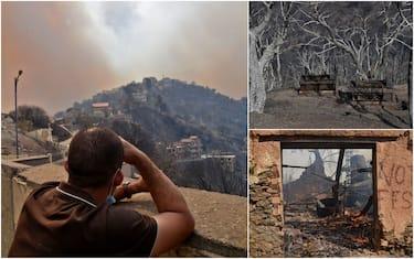 hero incendi algeria getty